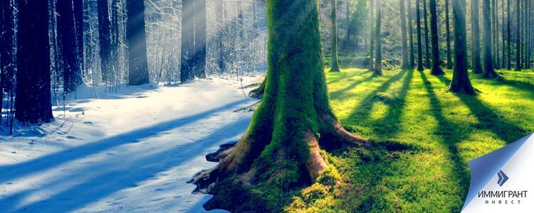 расположение и климат Австрии Швейцарии